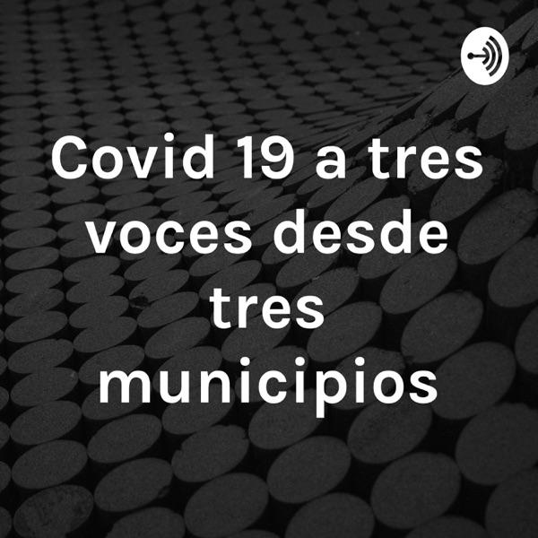 Covid 19 a tres voces desde tres municipios