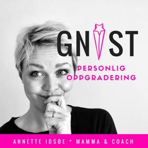 GNIST | Personlig Oppgradering