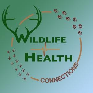 Wildlife Health Connections