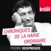 Chroniques de la haine ordinaire - France Inter