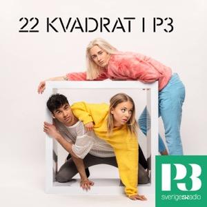 22 Kvadrat i P3