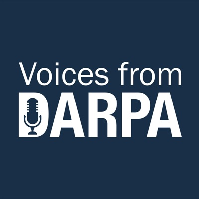 Voices from DARPA:DARPA