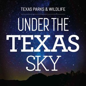 Under the Texas Sky