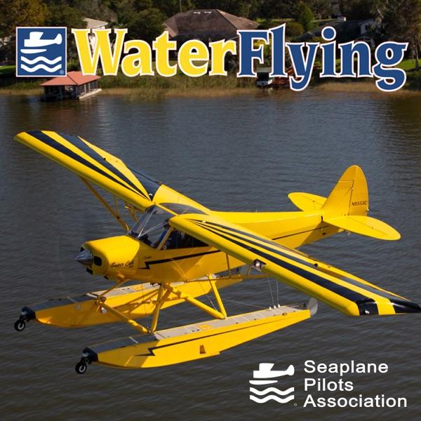 Water Flying Artwork