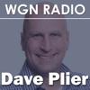 Dave Plier