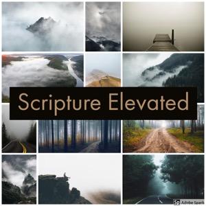 Scripture Elevated