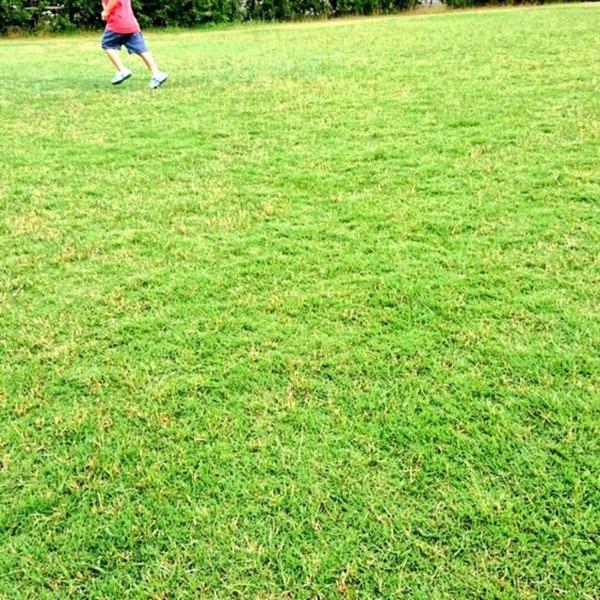 芝生も刈るWebディレクターのポッドキャスト(仮)