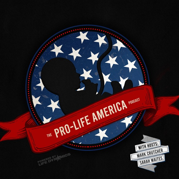 Pro-Life America Artwork