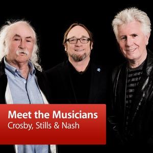 Crosby, Stills & Nash: Meet the Musicians