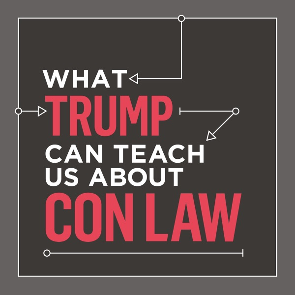List item What Trump Can Teach Us About Con Law image