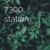 7300 station artwork