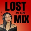 Lost In The Mix  artwork
