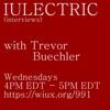 IULECTRIC (interviews) artwork