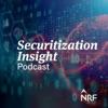 Securitization Insight artwork