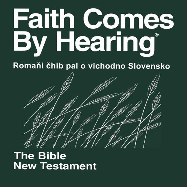 Romaňi čhib pal o vichodno Slovensko Biblia (zdramatizoval) - Romani, East Slovak Bible (Non-Dramatized)