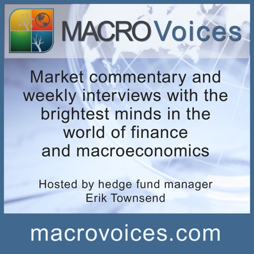 Cover image of Macro Voices