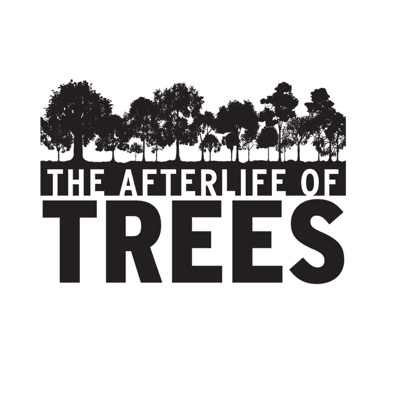 The Afterlife of Trees