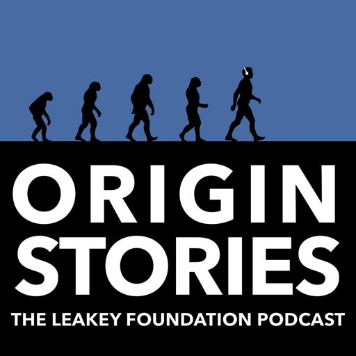 Cover image of Origin Stories