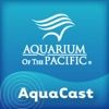 Aquarium of the Pacific AquaCast artwork