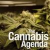 The Cannabis Agenda Podcast