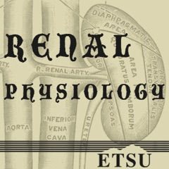 2012  Medical Physiology - Renal