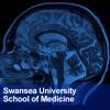 Swansea University Medical School: Neuroscience