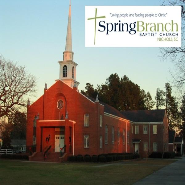 Spring Branch Baptist Church, Nichols,SC
