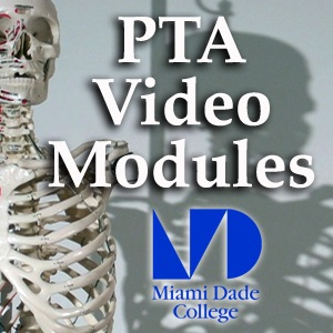 PTA Video Modules - Ankle and Foot