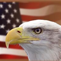 USArmed Podcast podcast
