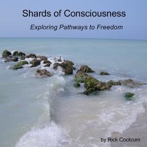 Shards of Consciousness