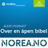 Over en åpen Bibel