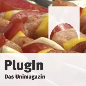 PlugIn - 19. Ausgabe