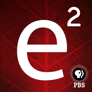 e2 | PBS:e2: the economies of being environmentally conscious