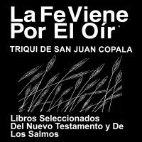Triqui, Copala Bibla (porciones) - Triqui, Copala Bible - Portions podcast