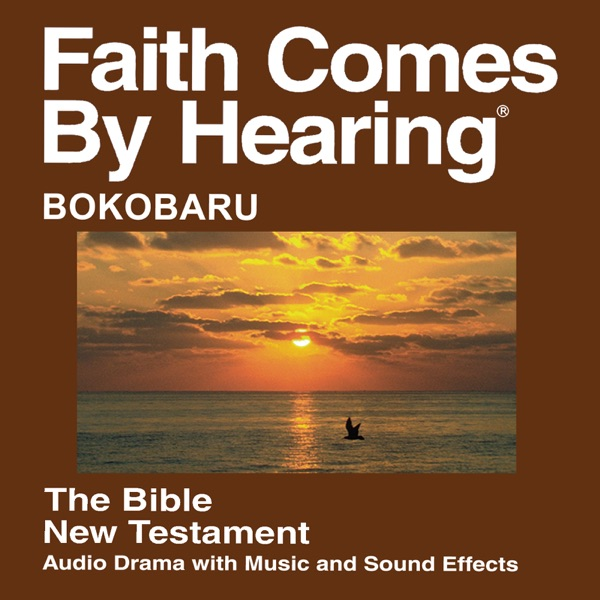 Bokobaru Bible (Dramatized)