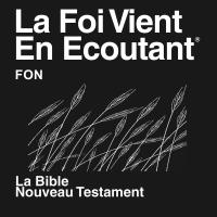 Fon (Fongbe) Bible (non-dramatisé) - Fon (Fongbe) Bible (Non-dramatized) podcast