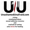Unashamed Unafraid artwork