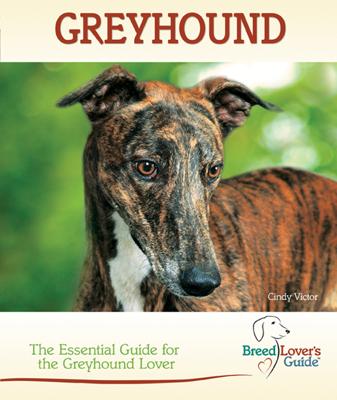Greyhound - Cindy Victor book