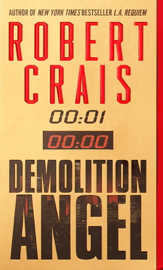 Demolition Angel PDF Download