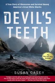 The Devil's Teeth book