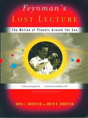 Feynman's Lost Lecture - David Goodstein & Judith R. Goodstein book