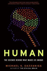 Human Summary