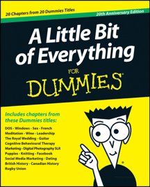 A Little Bit of Everything For Dummies book