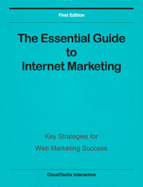 The Essential Guide to Internet Marketing book