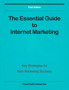The Essential Guide to Internet Marketing Book Review