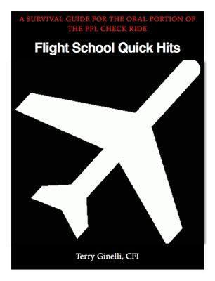Flight School Quick Hits - Terry Ginelli book