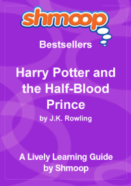 Harry Potter and the Half-Blood Prince book
