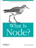 Brett McLaughlin - What Is Node? artwork