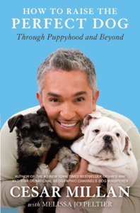 How to Raise the Perfect Dog Book Cover