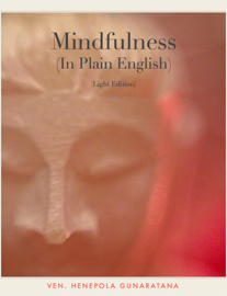 Mindfulness (In Plain English) book